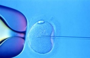 IVF Infertilit-He