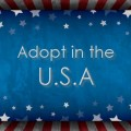 Domestic adoption in America