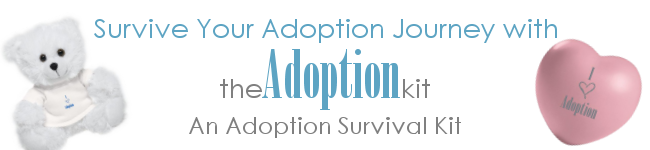 TheAdoptionKit Adoption Survival Kit